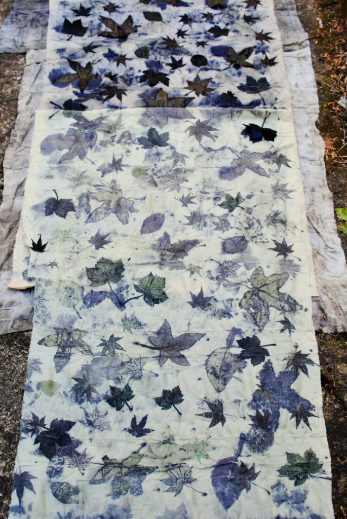 Natural dyeing with maple, liquidambar and cotinus leaves
