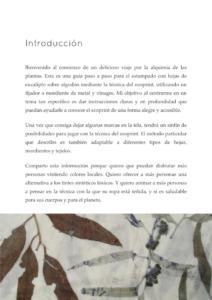 AlquimiaDelEucalipto-page004